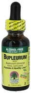 Bupleurum Root Alcohol Free