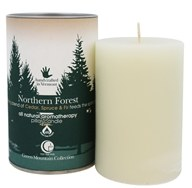 Way Out Wax - Pillar Candle Northern Forest