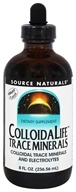 Source Naturals - ColloidaLife Trace Minerals Fruit Flavor