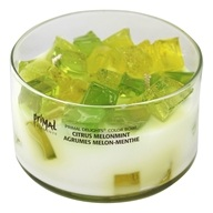 Primal Elements - Primal Delights Color Bowl Candle