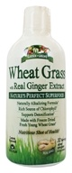 Garden Greens - Wheat Grass with Real Ginger