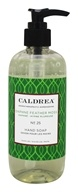 Caldrea - Hand Soap Daphne Feather Moss -