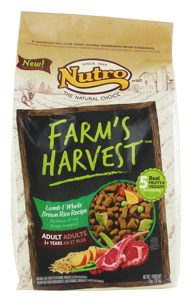 Where To Buy Nutro Dog Food In Canada