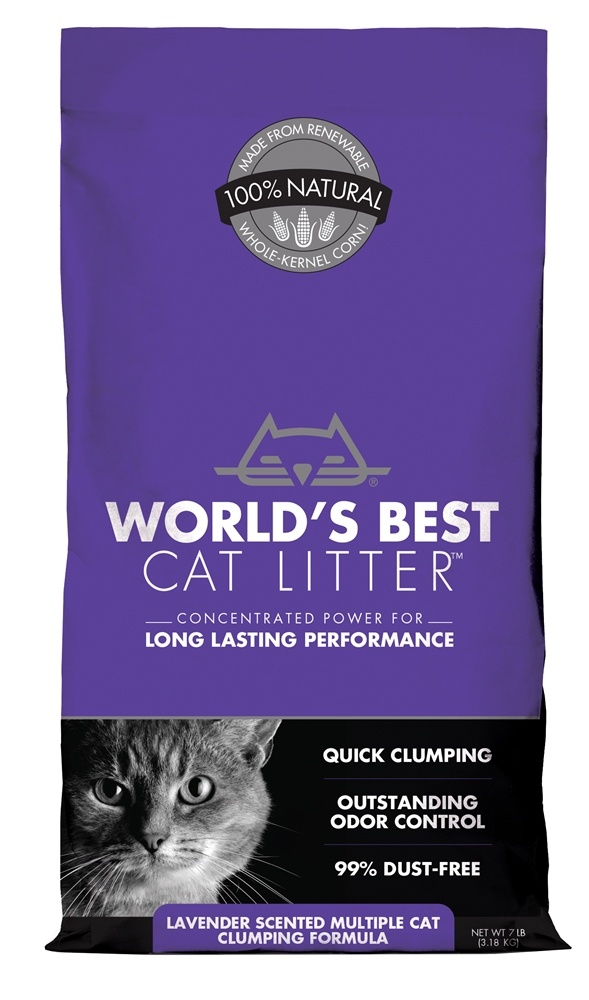 Best Cat Food Brands South Africa