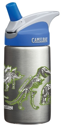 DROPPED: CamelBak - Kids Stainless-Steel Bottle Dinosaurs Design - 12 oz.