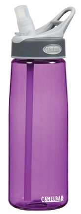 DROPPED: CamelBak - Better Bottle BPA Free Purple - 24 oz. CLEARANCE PRICED