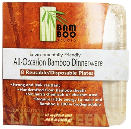 Zoom View - Bamboo Dinnerware Square Plate Reusable Disposable 10""