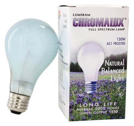 Zoom View - Chromalux A21 150W Frosted Light Bulb Full Spectrum Lamp