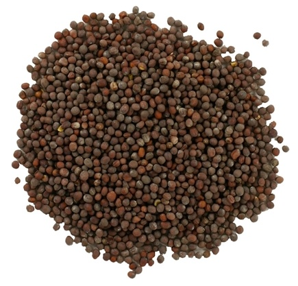 Frontier Natural Products - Mustard Seed Brown Whole Organic - 1 lb.