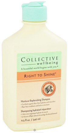 DROPPED: Collective Wellbeing - Shampoo Right To Shine Moisture Replenishing with Aloe Vera & Illipe Nut - 11.5 oz. CLEARANCE PRICED