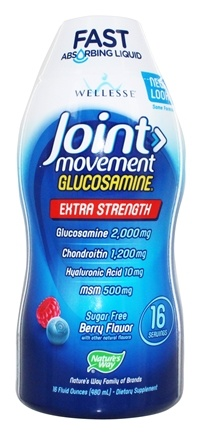 Wellesse - Joint Movement Glucosamine Liquid Natural Berry Flavor - 16 oz.