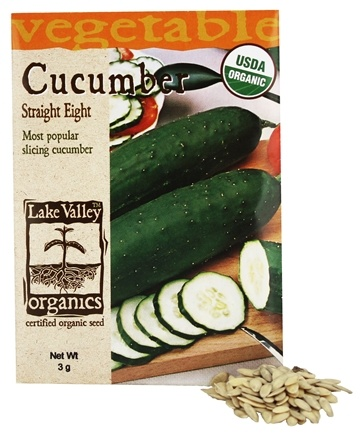 DROPPED: Lake Valley Seed - Organic Cucumber Straight Eight Seeds - 3 Grams