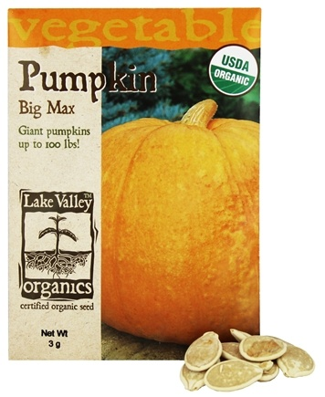 DROPPED: Lake Valley Seed - Organic Pumpkin Big Max Seeds - 3 Grams