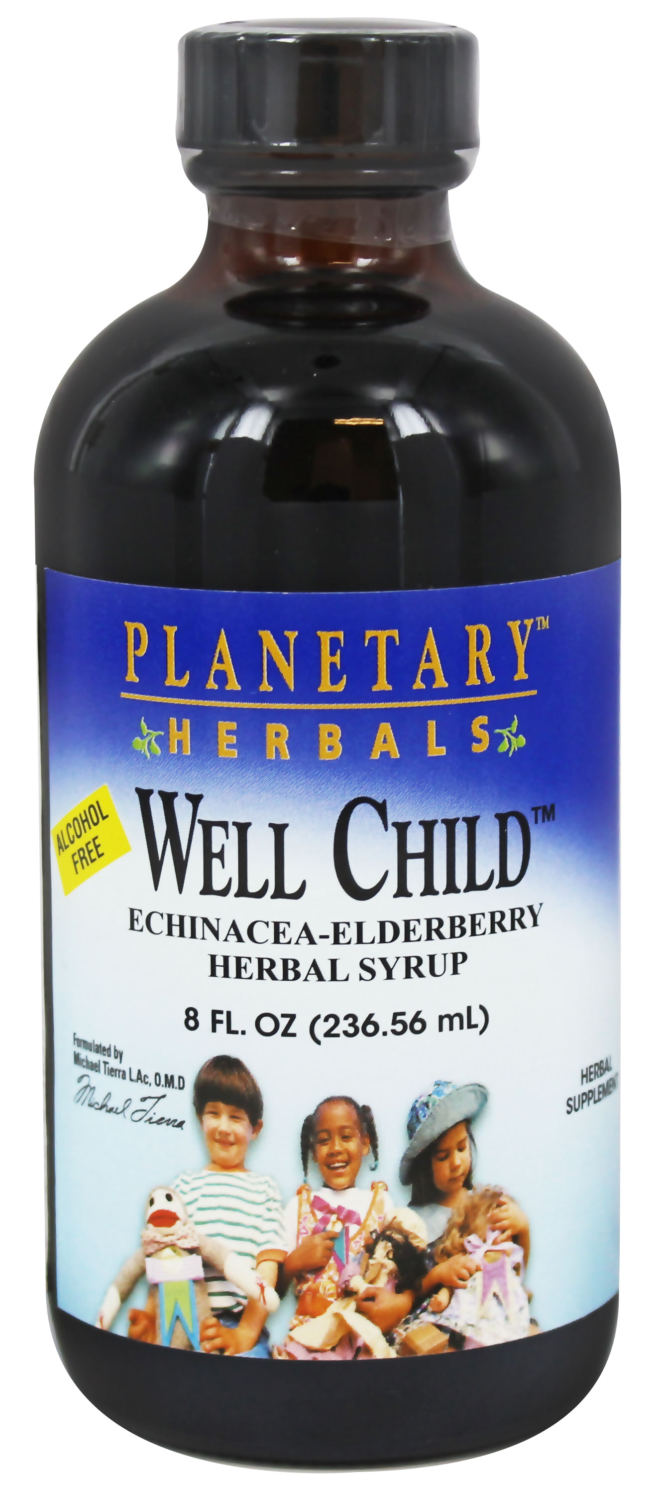 Planetary Herbals - Well Child Echinacea-Elderberry Herbal Syrup - 8 oz.