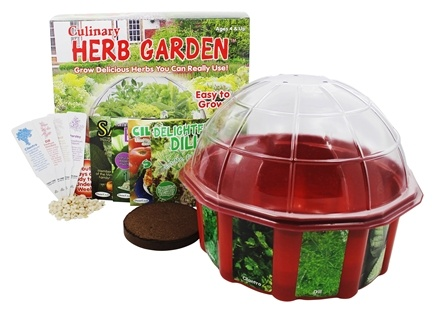 DROPPED: DuneCraft   Culinary Herb Garden Dome Terrarium Kit