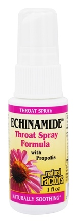 DROPPED: Natural Factors - Echinamide Throat Spray Formula with Propolis - 1 oz.
