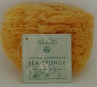 Zoom View - Natural Honeycomb Sea Sponge 4-5