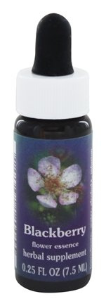 DROPPED: Flower Essence Services - Blackberry Flower Essence - 0.25 oz.