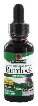 Nature's Answer - Burdock Root Alcohol Free - 1 oz.