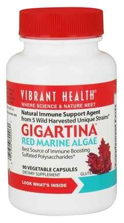 Zoom View - Gigartina Red Marine Algae