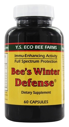 Zoom View - Bee's Winter Defense