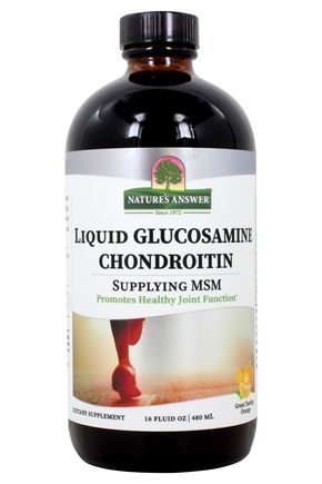 Nature's Answer - Liquid Glucosamine Chondroitin with MSM Natural Orange Flavor - 16 oz.