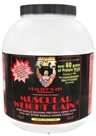 Healthy N' Fit - Muscular Weight Gain 2 Extreme Vanilla - 4.4 lbs. by Healthy N' Fit