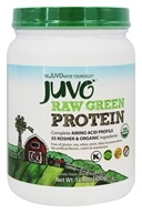 Juvo Inc. - Raw Green Protein 100% Vegan Organic Blend - 16.9 oz.