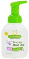 Image of BabyGanics - Foaming Hand Soap Fine & Handy Lavender Vanilla - 8.45 oz.