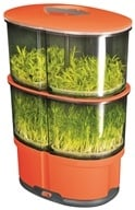 Image of iPlant - 2 Level Sprout Garden Orange