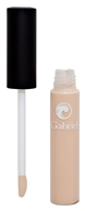 Gabriel Cosmetics Inc. - Concealer Light - 0.3 oz. - $15.20