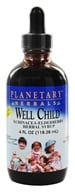 Planetary Herbals - Well Child Echinacea-Elderberry Herbal Syrup - 4 oz.