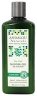 Andalou Naturals - Shower Gel Cooling Aloe Mint - 11 oz. - $7.39