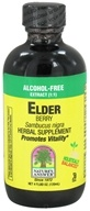Image of Nature's Answer - Elderberry Alcohol Free Extract (1:1) - 4 oz.