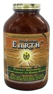 HealthForce Nutritionals - Vitamineral Earth Powder - 300 Grams (650786000123)