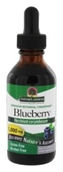 Nature's Answer - Blueberry Fruit Alcohol-Free Extract (1:1) - 2 oz.