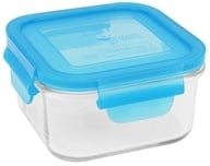 Wean Green - Glass Lunch Cube Blueberry - 16 oz. (063236490014)