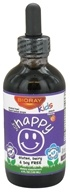 BioRay Kids - NDF Happy Mood & Immune Boosting Herbal Drops Peach - 4 oz. by BioRay Kids