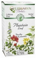 Celebration Herbals - Ethically Wildcrafted Caffeine Free Plantain Leaf Herbal Tea - 24 Tea Bags by Celebration Herbals