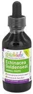 Gaia Herbs - GaiaKids Echinacea Goldenseal Herbal Drops - 2 oz.