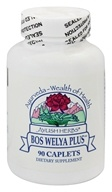InterPlexus - Ayush Herbs Bos Welya Plus - 90 Caplets by InterPlexus