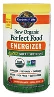 Image of Garden of Life - Perfect Food Energizer Raw Organic Super Food - 10 oz.