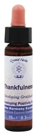 Crystal Herbs - Divine Harmony Essences Developing Positivity Thankfulness - 0.3 oz., from category: Flower Essences