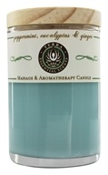Terra Essential Scents - Massage & Aromatherapy Soy Candle Peppermint, Eucalyptus & Ginger - 2.5 oz.