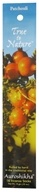 Auroshikha - True to Nature Incense Patchouli - 16 Stick(s)