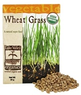 Lake Valley Seed - Organic Wheat Grass Seeds - 20 Grams