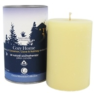 Way Out Wax - Pillar Candle Cozy Home - 2.75