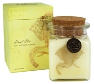 Pura Botanica - Just Because Soy Jar Candle Sweet Chai - 6.7 oz.