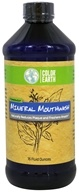 Color Earth - Peppermint Mineral Mouthwash - 16 oz.