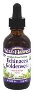 Oregon's Wild Harvest - Organic Echinacea Goldenseal Alcohol-Free Extract Natural Orange Flavor - 2 oz.